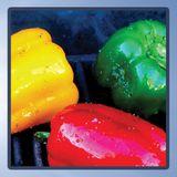 Summer 14 | Reggae BBQ Style