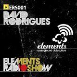 ERS001 - David Rodrigues
