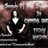 The sounds of The Shadows By Dj Cannibal Queen (MinimalSynth - SynthPunk)