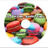 DJ Kobi ShaltieL - Hits Mix Vol 9 (Spring 2016)