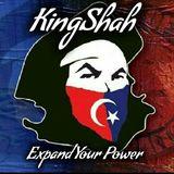 KingShah - Trap + Jungle Terror Mix Vol.20 (Final Volume)