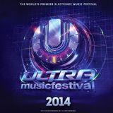 Cajmere - Live @ Ultra Music Festival Miami (USA) 2014.03.30.