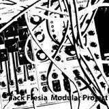Jack Fresia Modular Project - TR3