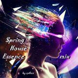 Spikee - Spring House essence mix