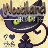 DJ contest for WOODLAND Festival 2017: Ray Heat