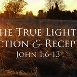 The True Light's Rejection and Reception - Audio