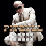 2010 Pitbull MegaMix