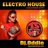 Electro House #30 (December 2014)