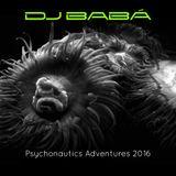 Psychonautics Adventures