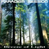 PARADIGM SESSION - Breeze of Light -