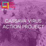 Disruptivo 192 - Cassava Virus Action Project
