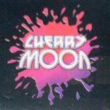 Resident DJ Team at Cherry Moon (Lokeren - Belgium) - 8 April 1995