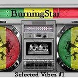 BurningStar_dj set_ Selected Vibes