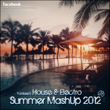 Yankee's House & Electro MashUp #4 (2012)