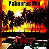 "Dr Piyayo - ""Palmeras Mix"" Funky Breaks, Mash Up & Breaks  Mixtape"