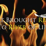 What Brought Revival to River of Life - Audio
