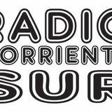Radio Corriente Sur. desde Bogotá Sur América, con un mensaje de cultura, música y conciencia.