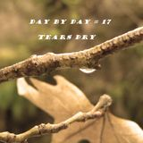 day by day # 17 Tears Dry