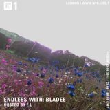 Endless  w/ Bladee - 23rd June 2017