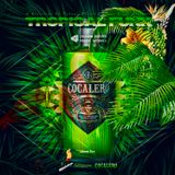 TROPICAL FUNK_2 inspired from COCALERO (D2FM_Beach) _masterd