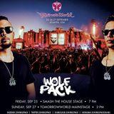 Wolfpack TomorrowWorld 2015 Mainstage Set