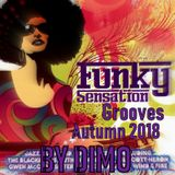 Funky Sensation Grooves-  Lost Grooves Mix Autumn 2018