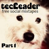 the tecLeader Part1 - free social mixtapes -  Mixed By DJ Kayowa
