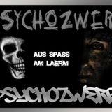 PsychoZwerg - Fuck The System