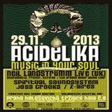 Neil Landstrumm (Live PA) @ Acidelika - Vegetable Market/Halle 8 Prag - 29.11.2013