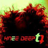 take a ride with T-QUEZ knee deep dec 2013 dj mix