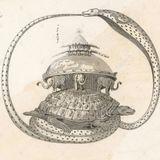 #06 Full-moon tortoise
