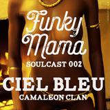Funky Mama SOULcast 002 DJ GUEST ::Ciel Bleu::