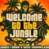 Jungle Cakes Mixtape 02 By DubLab (RaggaJungle)