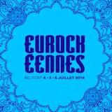 Les Eurockéennes 2014, c'est magique !