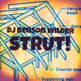 DJ Benson Wilder - STRUT!
