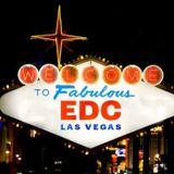DDNY EDC Vegas 2014 Edition