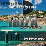 T-one in the mix (Ibiza Lovers)