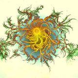 Alien Rainforest= New Roots (D.M.T Approved)