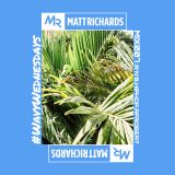 #WavyWednesdays MIX 007 @DJMATTRICHARDS