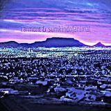 Carmont & sumkindofanimal - Rise n Fall