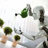 Technocracy - Animal Hospital 2012 Set