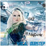 [Vol 30] Heap of Random. Vocal Dubstep (Vol 2)