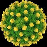 A Hepatitis minálunk - tematizált rádióműsor - Tilos Rádió  2014.08.28.