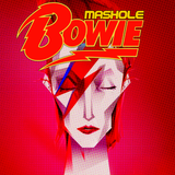 Mashole Vol.15- Bowie Edition