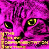 Graz - The Feline Defragmentation Mixtape