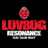 Gully's LuvBug Interview