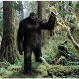 The Rat Queen- Episode 23: Bigfoot, Festivals, Booze Barfing, and Mystical Creatures