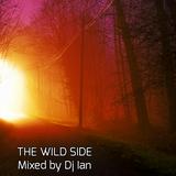 The Wild Side (Promo Set)