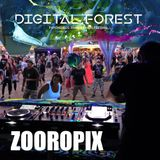 Zooropix @ Digital Forest festival 17.08.2018