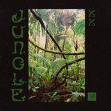 Soundsweekly Radio Ep. 20 - Jungle